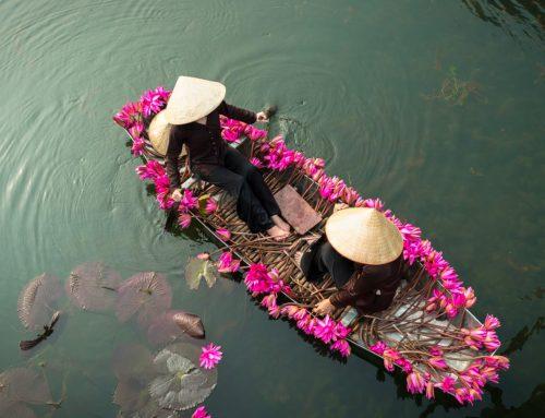 Vietnam del Nord tra cultura e bellezza